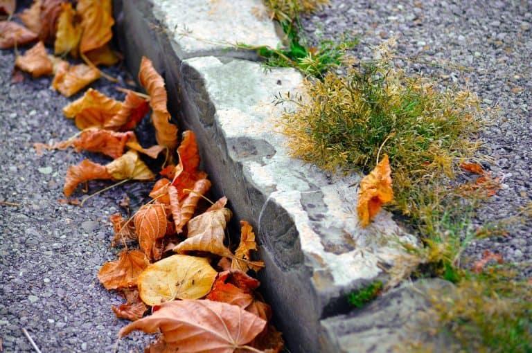 Laub und Grab am Randstein