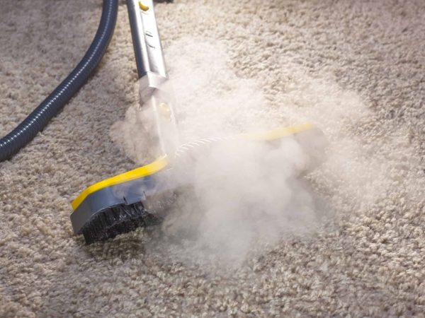Dampfreiniger: Test & Empfehlungen (01/20)