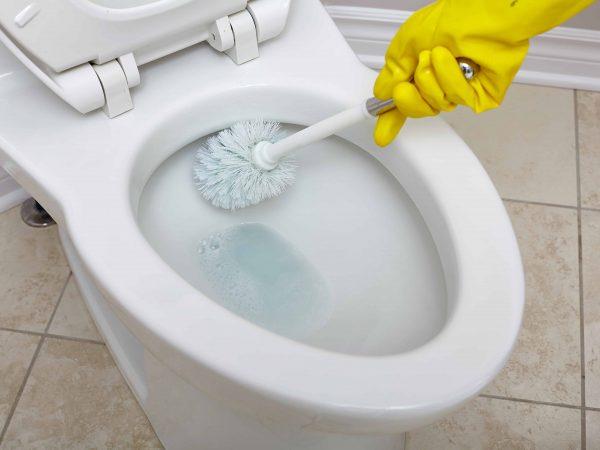 WC Reiniger: Test & Empfehlungen (01/20)