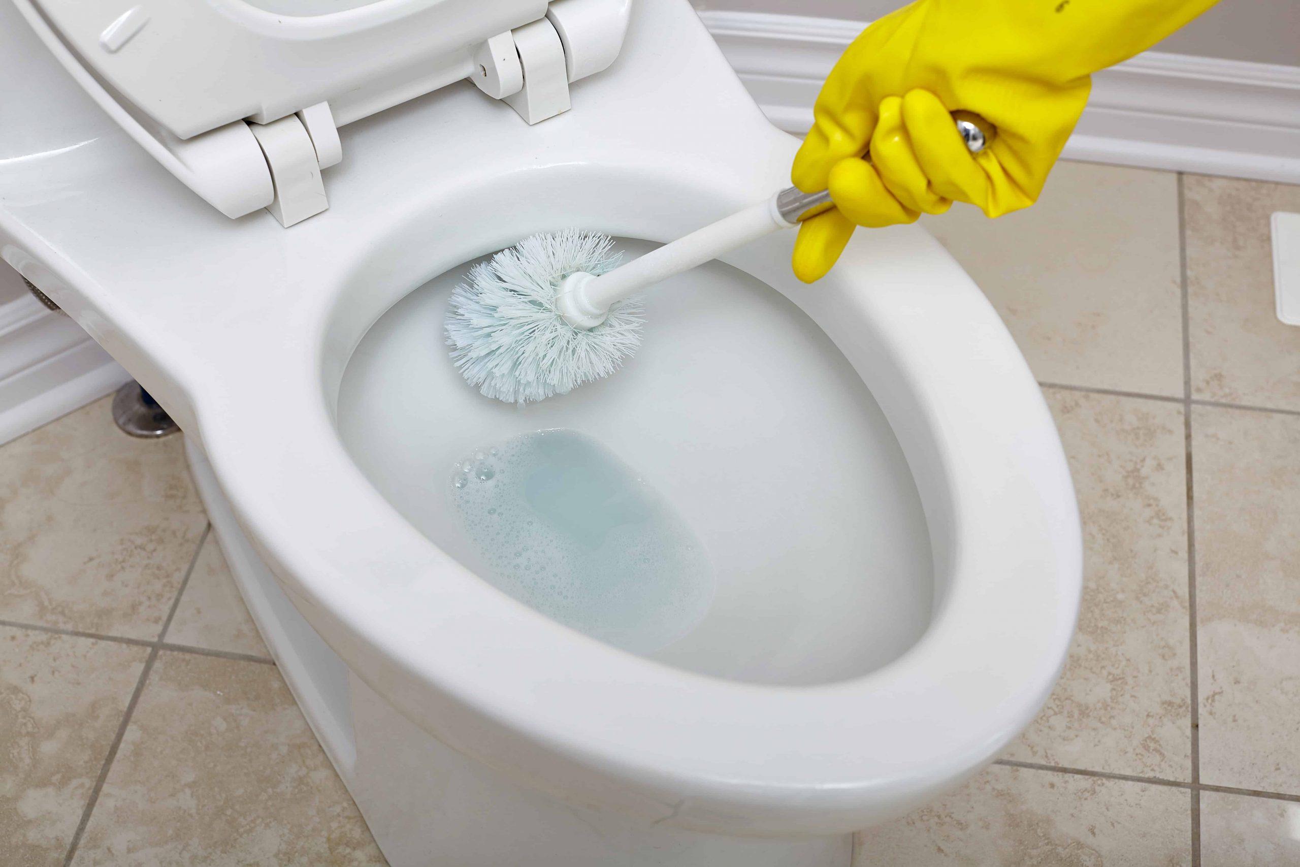 WC Reiniger: Test & Empfehlungen (07/20)