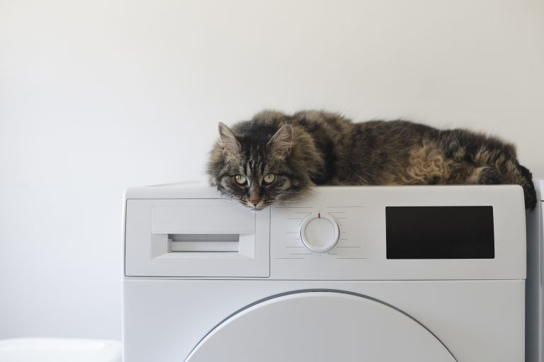 LG Waschmaschine-2
